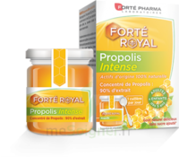 Forte Pharma Propolis Intense Gelée Pot/40g à AUCAMVILLE