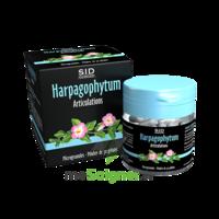 Sid Nutrition Phytoclassics Harpagophytum Gélules B/30 à AUCAMVILLE