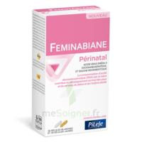 Pileje Feminabiane Périnatal 28 Gélules Blanches Et 28 Gélules Jaunes à AUCAMVILLE
