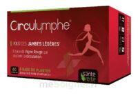 Santé Verte Circulymphe Triple Actions B/60 à AUCAMVILLE