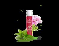 Puressentiel Anti-pique Roller Apaisant Anti-Pique - 5 ml à AUCAMVILLE