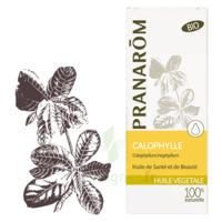 Pranarom Huile Végétale Bio Calophylle 50ml à AUCAMVILLE