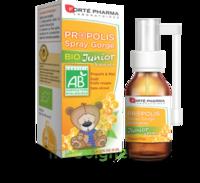 Forte Pharma Propolis Bio Spray Junior 15ml à AUCAMVILLE