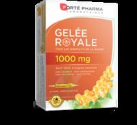 Forte Pharma Gelée Royale 1000 Mg Solution Buvable 20 Ampoules/10ml à AUCAMVILLE