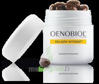 Oenobiol Solaire Intensif Caps peau normale Pot/30 à AUCAMVILLE
