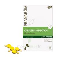 Aromaforce Caps inhalation bio B/15 à AUCAMVILLE