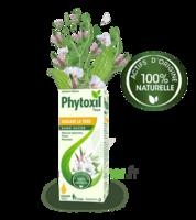 Phytoxil Toux Sans Sucre Sirop Adulte Enfant +2 Ans Fl/120ml à AUCAMVILLE