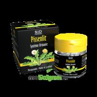 Sid Nutrition Phytoclassics Pissenlit Gélules B/30 à AUCAMVILLE
