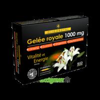 Sid Nutrition Oligoroyal Gelée Royale 1000 Mg 5g _ 20 Ampoules De 10ml à AUCAMVILLE